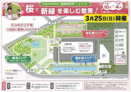 20180325桜と新緑_ページ_1.jpg