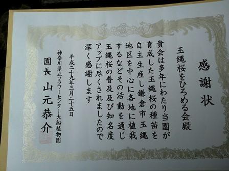 DSC_3580.jpg