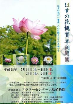 ハスの花観賞早朝開園(チラシ)_page0001.jpg